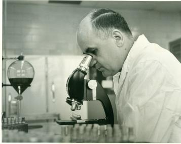 Dr. Hilleman looking through microscope